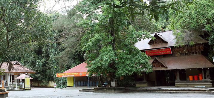 mannarsala