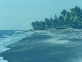 thottappally-beach